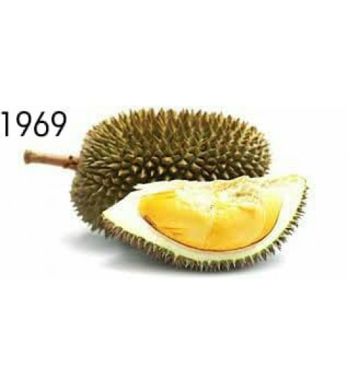 jus durian