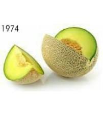 jus melon